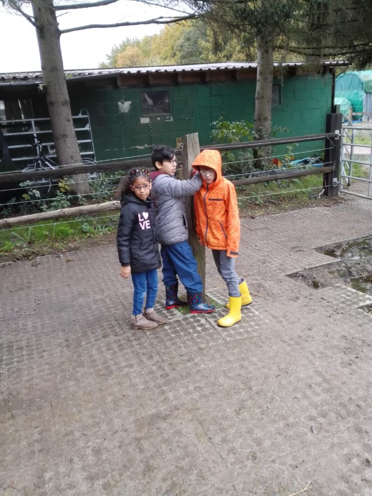 Drei Kinder auf dem Reiterhof